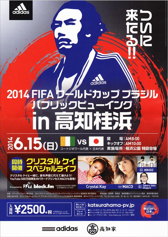 2014 FIFA ワールドカップ ブラジル パブリックビューイングin高知桂浜