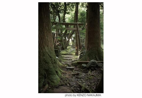写真提供:中島健蔵