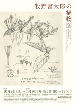 牧野富太郎の植物図